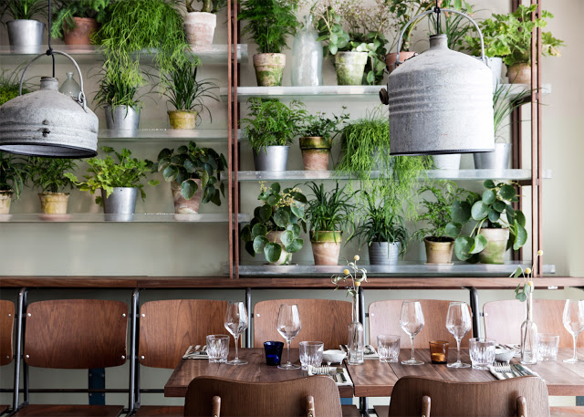 vakst-nordic-restaurant-interior-genbyg-copenhagen-denmark-chris-tonnesen_dezeen_1568_5