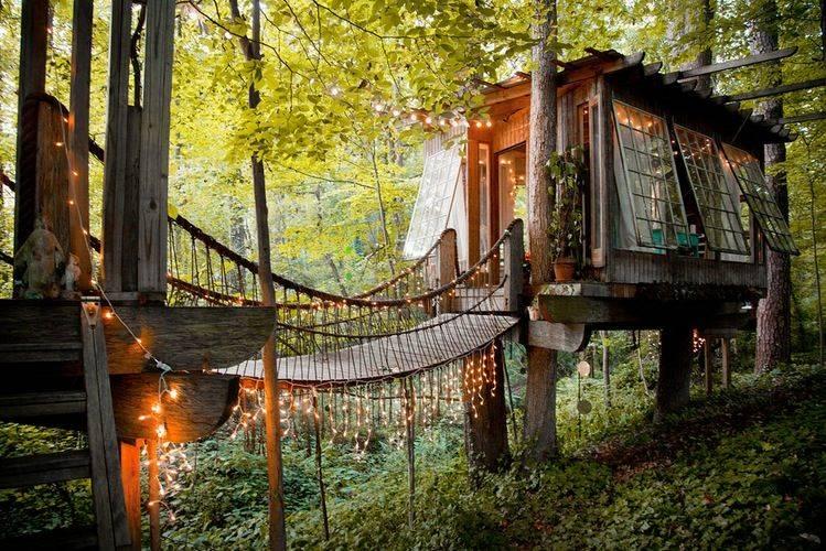 Domek na drzewie airbnb